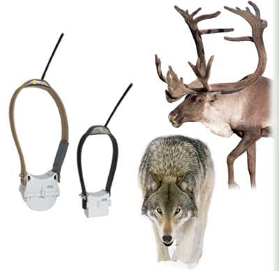 Wildlife Monitoring Products